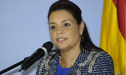 "Ex-Vizepräsidentin Roxana Baldetti (Copyright: <a href=""https://www.flickr.com/photos/inter_american_commission_of_women/"" target=""_blank"" title=""Opens external link in new window"" external=""1"">Inter-American Commission of Women</a>, <a href=""https://www.flickr.com/photos/inter_american_commission_of_women/9008378309/in/photolist-eJ3i2p-pg2DdY-qGFsr4-jkcarZ-jjTbhy-eDpHDU-jhCYx3-jj2bgR-ji5bVY-jhzebE-jjx315-jhT2gj-jk7nwG-ji64iH-jiingH-jjqM1V-jjf4gJ-jkNZvs-jigQvA-jjZFKk-jhE5Xy-jdr81R-jjxDmx-jhJXHV-jjEccf-jj6x32-jjH7Dw-jjMBxB-jjq4W3-jhsDKa-jgvYLB-jdXmhc-eJ3hRF-jfxvVh-jfFzWg-je8YTB-jfvYnD-jg3cGJ-jnwjsh-jmdoAu-jg6CzH-jdvmkE-jevdEJ-jeh5Ry-jgQjor-jfmEbs-jhnkKW-jgeJpH-jgtm6N-jgThiZ"" target=""_blank"" title=""Opens external link in new window"" external=""1"">CIM Round-table ""Women and drugs in the Americas: A Working Analysis"" (June 3rd 2013)</a>, <a href=""https://creativecommons.org/licenses/by-nc-nd/2.0/"" target=""_blank"" title=""Opens external link in new window"" external=""1"">CC BY-NC-ND 2.0</a>)"